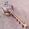 Miniature kamele n'goni 12 strings