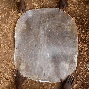 Fine goat skin for djembe. BaraGnouma