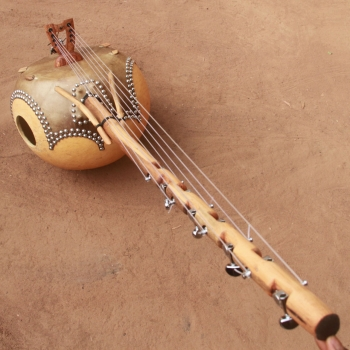Donso n'goni 8 strings with...