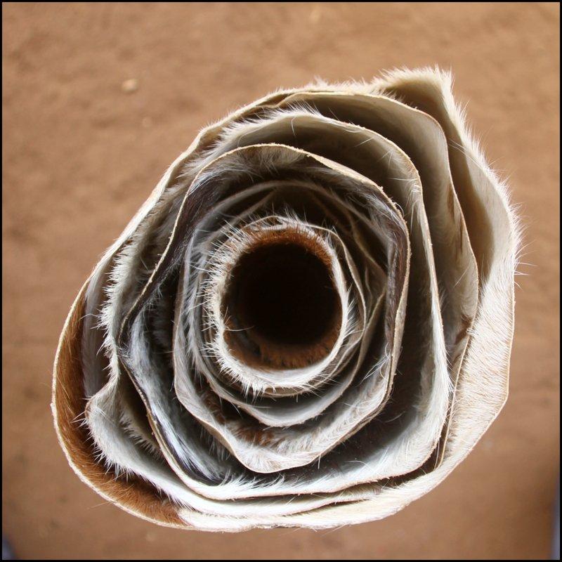 Vente en ligne de peaux de chevre fines pour djembe. Achat peau de djembe